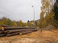Malá Morávka, nádraží, dříví.jpg