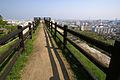 Marugame Castle15bs.jpg