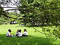 Meiji Shrine - DSC05018.JPG
