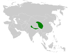 Melanocorypha maxima distribution map.png