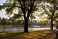 Melbourne CBD (6981613813).jpg