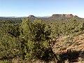 Mescal Trail, Sedona, Arizona - panoramio (4).jpg