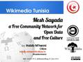 Mesh Sayada a Free Community Network for Open Data and Free Culture, presentation in Wiki Indaba 2014.pdf