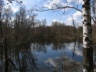 Meshchyora National Park