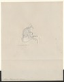 Midas oedipus - 1788-1863 - Print - Iconographia Zoologica - Special Collections University of Amsterdam - UBA01 IZA1000484.tif