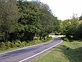 Minor road between Hazel Hill and Yolsham Hill, New Forest - geograph.org.uk - 54966.jpg