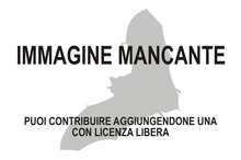 Immagine di Scotomanes ornatus mancante