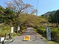 Miwakare park.jpg