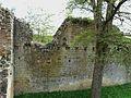 Molières (24) château enceinte (7).jpg