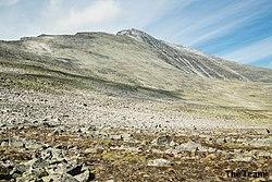 Mont Narodnaïa.jpg