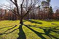 Moorside, Gatineau Park (10493711713).jpg