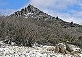 Mount Buffalo N.P. 25.jpg