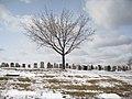Mount Hope Cemetery.JPG