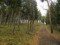 Mount Kinkeisan.JPG