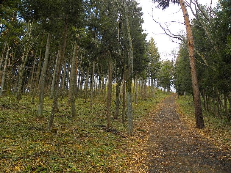 Mount Kinkeisan