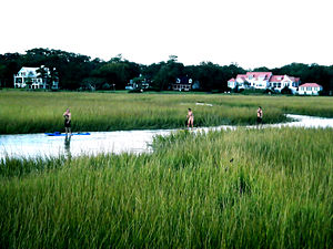 Mount Pleasant, South Carolina - Exploring the marshes