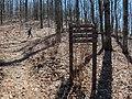Mount Yonah Trail - panoramio (7).jpg
