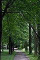 Mountsberg (3680643457).jpg