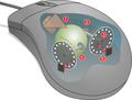 Mouse mechanism diagram.png