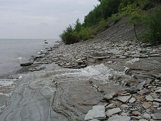 Lake Erie Watershed (Pennsylvania) - Mouth of Duck Run, Erie Bluffs State Park
