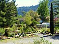 Moyer Nurseries Property - Winston Oregon.jpg