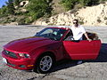 Mustang in big bear mountines.jpg