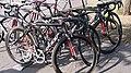 NFTO bicycles.jpg