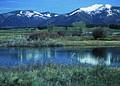 NRCSMT01072 - Montana (4991)(NRCS Photo Gallery).jpg
