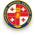 NSC of Georgia logo.png