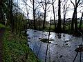 NSG Wennetal nördlich von Wenholthausen fd (2).jpg