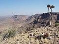 Namibia - P9023351 (15182558629).jpg