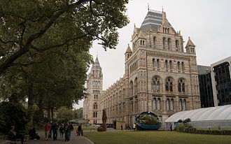 South Kensington - The  Natural History Museum