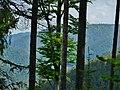 Naturschutzgebiet Hesel-, Brand- und Kohlmisse, Blick in das Tal der Kleinen Enz - panoramio (1).jpg