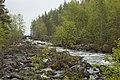 Near Keskimöjärvi (7365708062).jpg