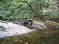 Nedd Fechan River - geograph.org.uk - 42561.jpg