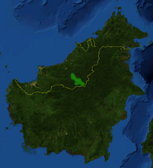 Nepenthes platychila distribution.png