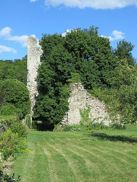 Ruines de l'abbaye à travers la végétation