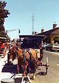 New Orleans 1977 16.jpg