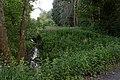 Niederrodener Lache 4.jpg