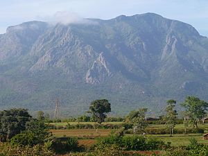 Nilgiri mountains - Nilgiri Hills from Masinangudi