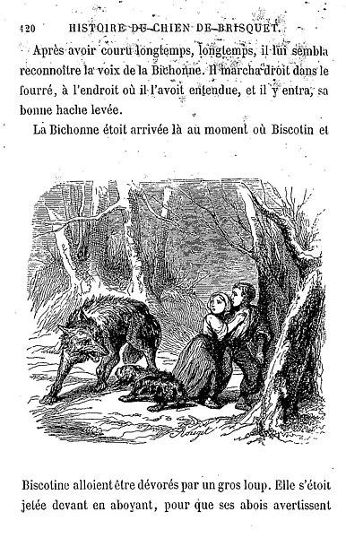Filenodier Brisquet 126jpg Wikimedia Commons