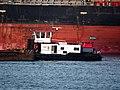 Noord - ENI 02317902, Calandkanaal, Port of Rotterdam.JPG