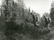 Norskeflyktninger