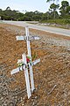 Not without a toll - roadside memorial.jpg