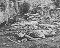 O'Sullivan, Timothy H. - Gettysburg, toter konföderierter Scharfschütze (Zeno Fotografie).jpg