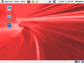 OEL Desktop.png