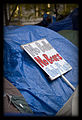 Occupy Wall Street 11 11 11 Debra M GAINES Sign 4927.jpg