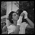 Oct. 1951. La fête du raisin Chasselas à Moissac (1951) - 53Fi4914.jpg