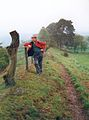 Offas Dyke and the Welsh border - geograph.org.uk - 298036.jpg