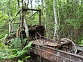Old Rail Car? (37690661335).jpg